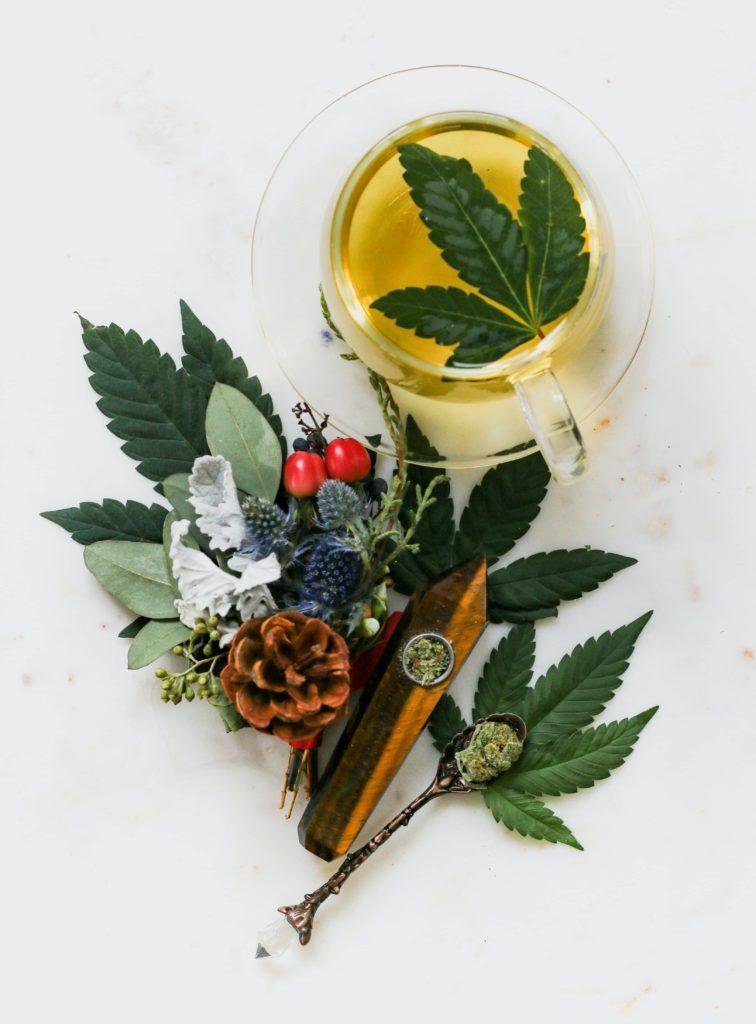 Marijuana-and-cannabis-are-the-same